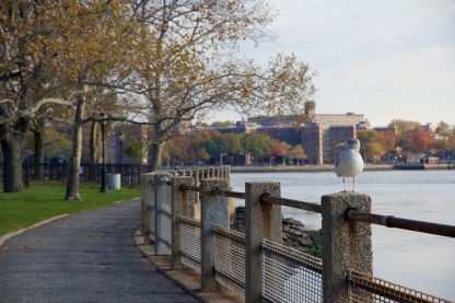 Riverside bagian timur