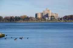 Pemandangan dari Northpoint Park