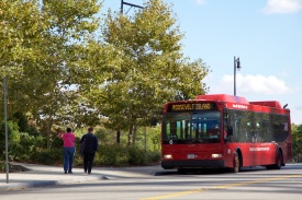 Red Bus ini gratis dan datang setiap 15 menit
