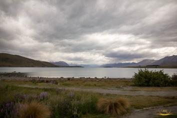 Danau Tekapo
